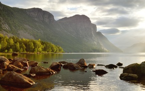 cliff, Norway, trees, fjord, morning