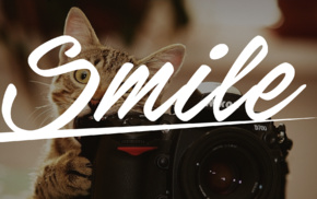 camera, dark, text, Nikon, cat, brown