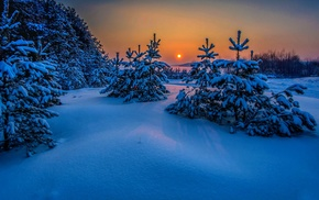 sea, cold, trees, sunset, landscape, Russia