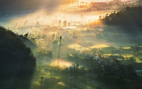 mist, sunlight, Indonesia, village, landscape, field