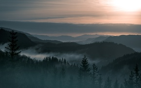 landscape, Norway, forest, trees, mountains, mist