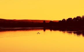 orange, trees, sunset, water, landscape, photography