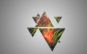 triangle, grass