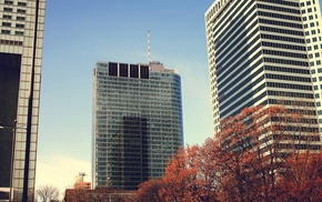 photography, architecture, trees, building, fall, urban