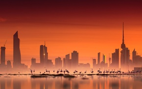 cityscape, photography, city, building, flamingos, sea