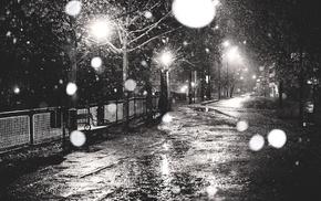 monochrome, urban, photography, trees, street, snow