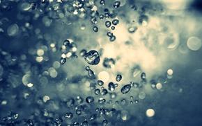 macro, water drops, photography