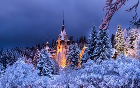 snow, night, winter