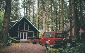 car, Washington state, forest, house, foliage, pine trees
