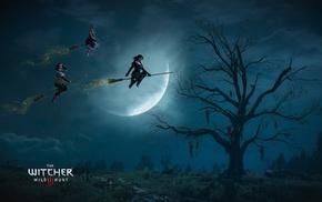 The Witcher 3 Wild Hunt, artwork, Yennefer of Vengerberg, video games, Triss Merigold