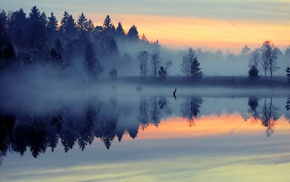 blue, lake, mist, reflection, trees, forest