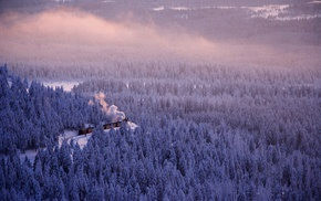 railway, nature, winter, forest, saxonia, mist