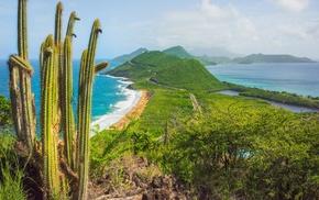 tropical, road, landscape, beach, shrubs, summer