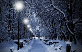 trees, lights, nature, park, bench, winter