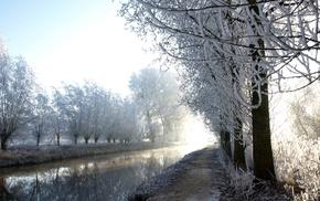 trees, landscape, snow, nature, river, plants