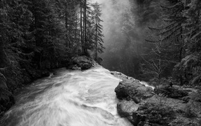 mist, monochrome, forest, nature, waterfall, sunlight
