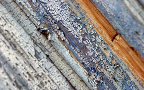 depth of field, wooden surface, wood, texture, simple