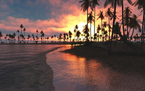 sky, sand, sea, palm trees, beach, tropical