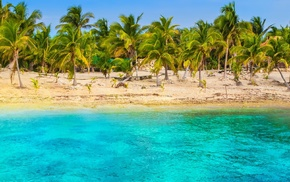 sand, palm trees, turquoise, landscape, nature, tropical
