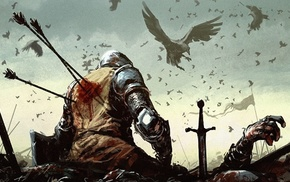warrior, medieval, Dark Souls, blood, arrows, birds