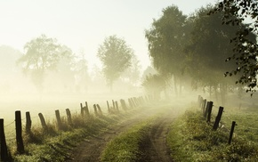 trees, nature, photography, mist, fence, landscape