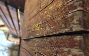 depth of field, wooden surface