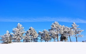 winter, snow, landscape, seasons, trees