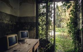 nature, computer