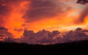 black, red, clouds, filter, sky, grass