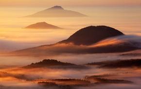 mist, mountains, sunlight, landscape, nature, forest