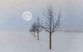 nature, winter, seasons, Moon, trees, landscape