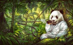 tuxedo, jungle, cigars, panda