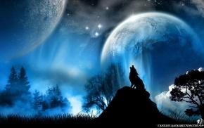 vector, wolf