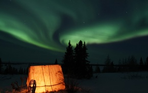 aurorae, National Geographic, trees, tent, snow