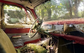 interior, vehicle, car, wreck, spider