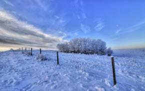 snow, winter, landscape, ice, fence, trees