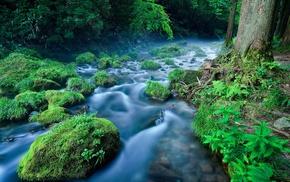 water, landscape, nature, river, plants, green