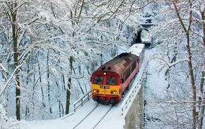 winter, train