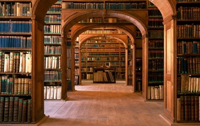 knowledge, shelves, library, interior, interior design, books