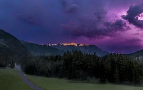 forest, storm, Austria, landscape, sunlight, road