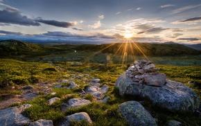 grass, nature, rock, Sun