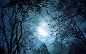 night, trees, clouds, Moon, dark, fantasy art