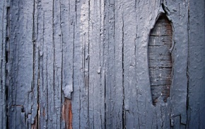 texture, simple, wall, planks, wooden surface, wood