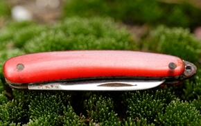 nature, green, macro, red, moss, knife
