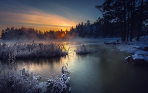 winter, nature, sunset, landscape