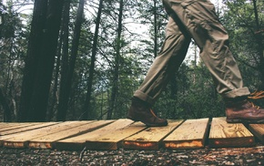 walking, wood, forest, fall, people, nature