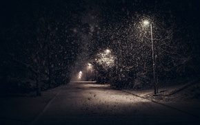 night, calm, street light, snow, winter, urban