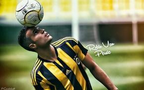 footballers, soccer, Robin van Persie, Fenerbahe
