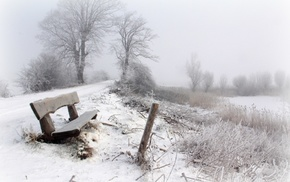 trees, bench, snow, seasons, landscape, winter