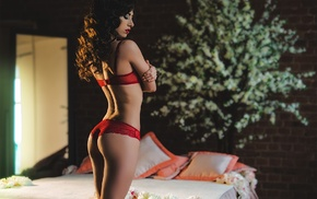 lingerie, red lipstick, thong, rear view, red bra, curly hair